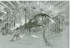 mc_081407_oasis10.jpg